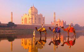 Горящий тур в Индию с вылетом из Москвы