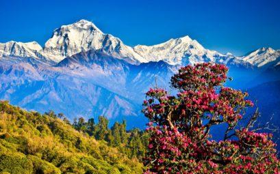 дешевые билеты в Непал
