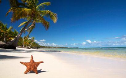 Купить горящий тур в Доминикану из Москвы за 36300 рублей
