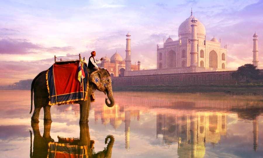 Очень горящий тур из Москвы в Индию всего за 14600 рублей