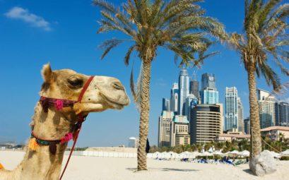Тур в Эмираты всего за 20 тысяч рублей