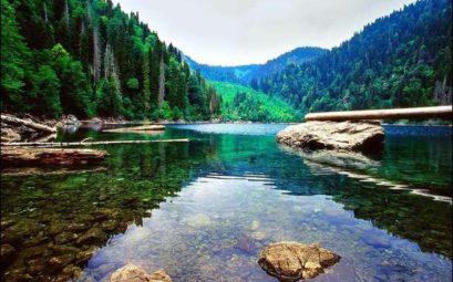 Очень дешевый тур в Абхазию на завтра за 6800 рублей