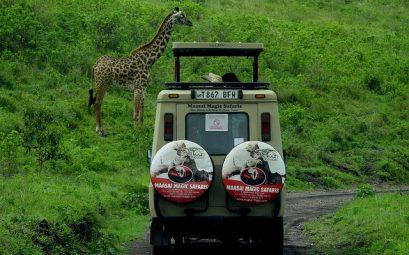 Очень горящий тур из Москвы в Танзанию на неделю